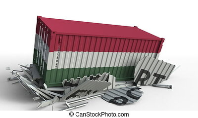 Cargo container with flag of Hungary breaks container with...