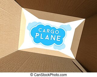 Cargo plane seen from interior of cardboard box