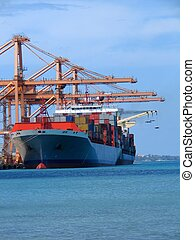 Cargo series