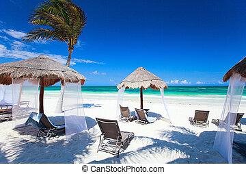 caribbean , ακτή