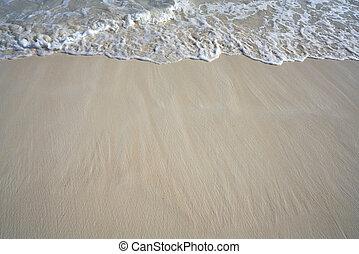 caribbean , αφρός , ακτή , κύμα , άμμοs , άσπρο