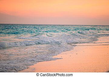 caribbean , όμορφος , δύση ακρογιαλιά , καταπληκτικός , εξωτικός
