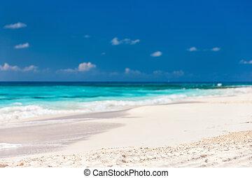 Caribbean beach and sea