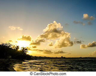 Beautiful sunset over the sea with a view at palms on the white beach in Guadeloupe, Caribbean, Antilles.