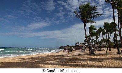 Caribbean beach - Beach in the Caribbean
