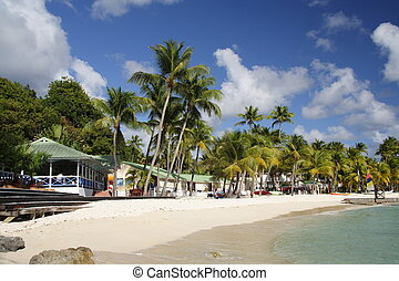Caribbean Beach - Beautiful caribbean beach