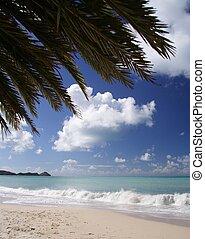 Caribbean Beach - Beautiful caribbean beach with a palm leaf...