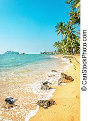 Caribbean beach full of palm trees against azure sea - ...