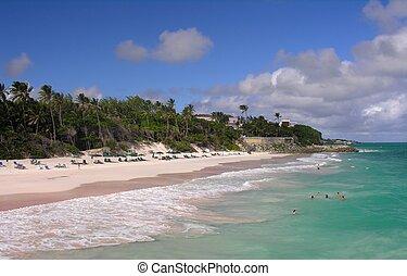 Caribbean Beach - Impressions from Crane Beach / Barbados