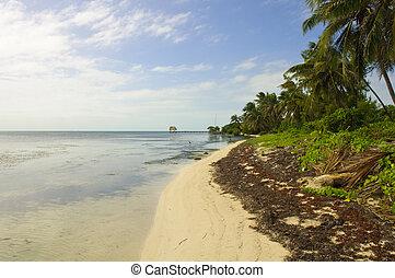 Caribbean Beach in Ambergris Caye, Belize