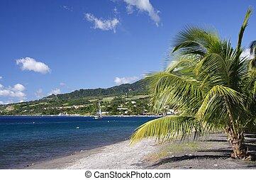 Caribbean Beach with grey lava sand