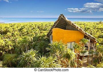 caribbean, mexikó, épület, sárga, tropikus, dzsungel