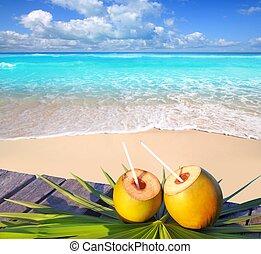 Caribbean paradise beach coconuts cocktail palm trees