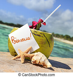 Caribbean paradise beach coconuts cocktail