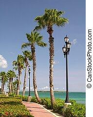 The promenade of Oranjestad / Aruba