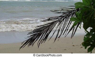 Caribbean Sea tropical vacation