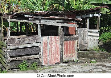 Caribbean Shack - Caribbean shack in the islands.