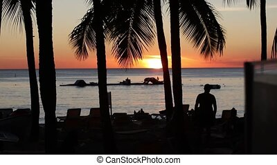 Caribbean Sunset silhouette with palm trees and sea