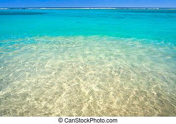 caribbean tengerpart, türkiz, víz, struktúra