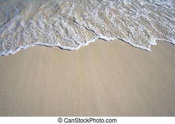 caribbean, white homok, tengerpart, lenget, hab