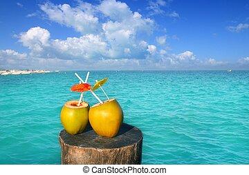 Caribe, dos, agua, jugo, pajas, Cocos, fresco
