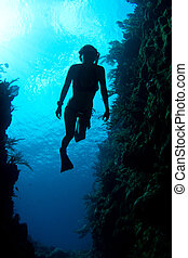 caribe, freediver