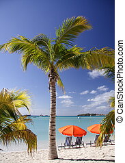 caribe, sueño