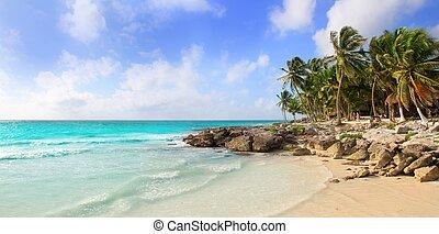 caribe, tulum, méxico, tropical, panorámico, playa