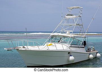 caribe, zambullida, barco