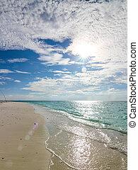 Caribian Summer