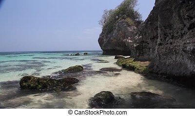 Caribian wave