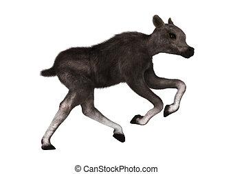Caribou Calf - 3D digital render of a caribou calf isolated ...