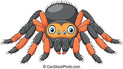 caricatura, araña, tarántula