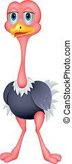 caricatura, avestruz