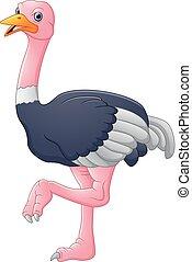 caricatura, avestruz, lindo