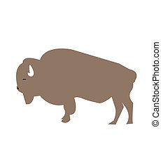 caricatura, bisonte, ilustração