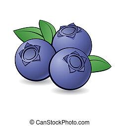 caricatura, blueberry.