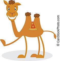 caricatura, camello