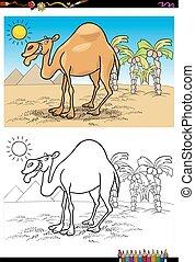 caricatura, camelo, ligado, deserto, tinja livro