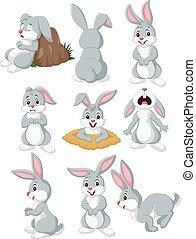 caricatura, coelho, com, diferente, pose, e, expressão