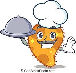 caricatura, cozinheiro, personagem, bandeja, alimento porção, pseudomonas