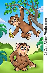 caricatura, dos, monos