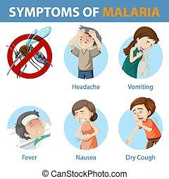 caricatura, estilo, síntomas, malaria, infographic