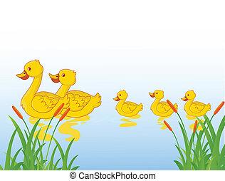 caricatura, familia , divertido, pato