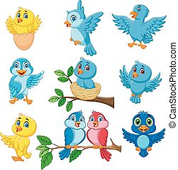 caricatura, feliz, pássaros, cobrança, jogo