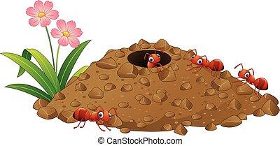 caricatura, formigas, colônia, e, formiga, colina