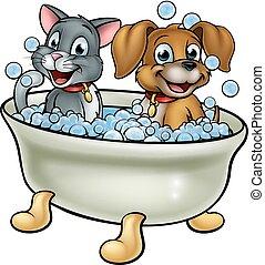 caricatura, gato, cão, banho