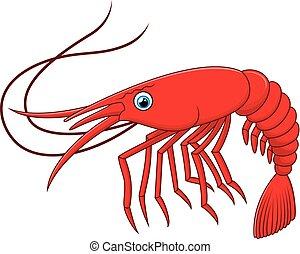 caricatura, ilustración, camarón