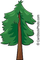 caricatura, ilustración, de, conífera, árbol