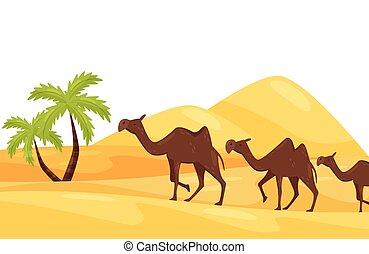caricatura, paisaje, de, caliente, desierto, con, tres, marrón, camellos, verde, árboles de palma, y, grande, arenoso, hills., plano, vector, diseño